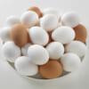 『卵1日3個でコレステロールが改善』毎朝1個食べるだけで抗炎症の効果あり