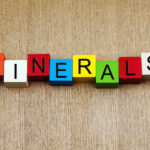【ミネラルの吸収率】胃酸と腸内環境が微量ミネラルの吸収になぜ重要なのか?