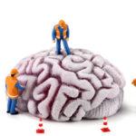 【うつ病・パニック障害】ビタミンB6不足が疑われる脳の状態とは?